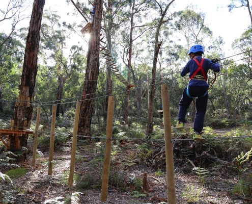 tree-adventure-otway-park-flying-foxes-kids-advent111