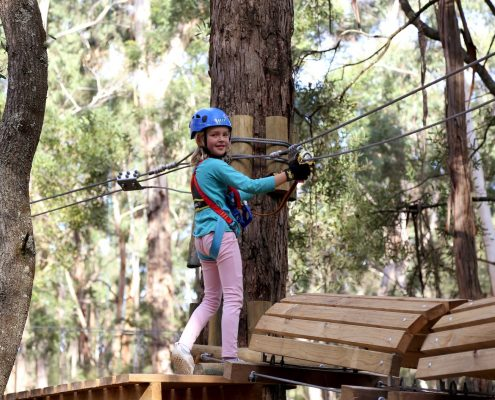 tree-adventure-otway-park-flying-foxes-kids-advent31-1