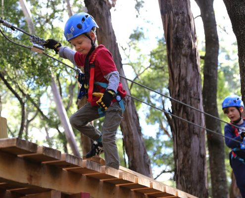tree-adventure-otway-park-flying-foxes-kids-advent1