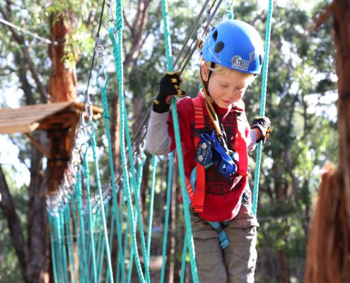 tree-adventure-otway-park-flying-foxes-kids-advent71